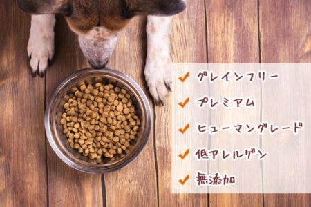 犬のフケ対処法食事