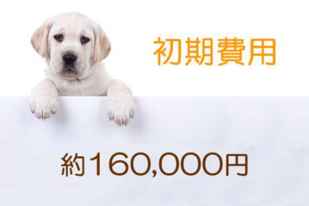 犬を飼う初期費用