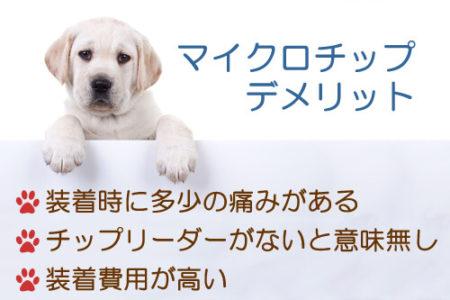 マイクロチップを犬につけるデメリット