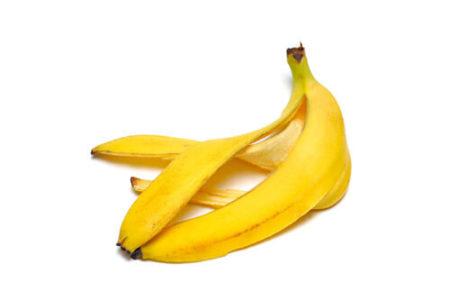 犬にバナナの皮を与えない