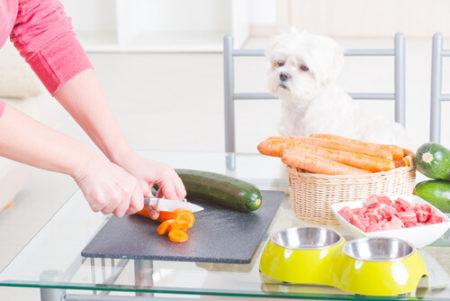 犬はにんじんを食べても大丈夫