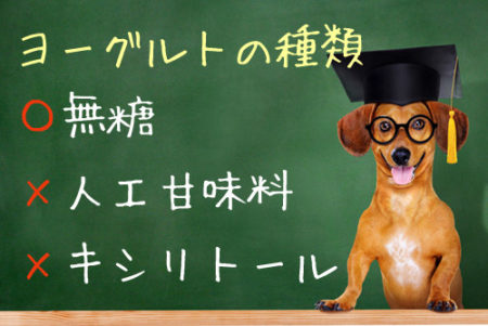 犬に与えるヨーグルトの種類