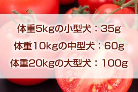 犬のトマトの適量