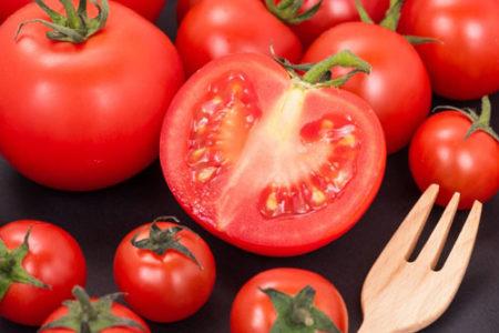 犬にトマトとミニトマトどっち