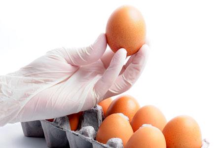 次亜卵の殻を塩素酸ナトリウムで殺菌